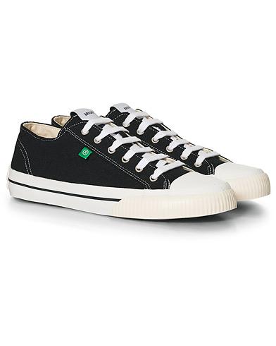 Axel Arigato Midnight Low Sneaker Black